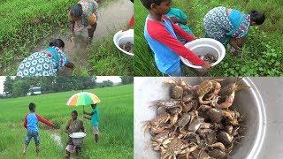 அழகான வயல் வெளியில்  குடும்பத்தோடு  நண்டு🦀🦀🦀 வேட்டை / Awesome River  Crabbing Catching in India