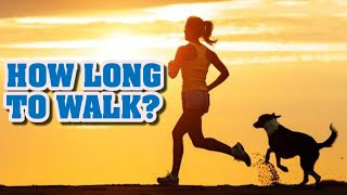 How long should I walk my dog every day