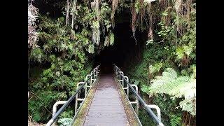 Nāhuku - Thurston Lava Tube, Hawaii Volcanoes National Park