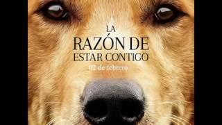 La Razón De Estar Contigo /  A Dogs Purpose Hd