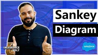 Sankey Diagram in Salesforce