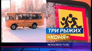 По Парфинскому району колесят новые школьные автобусы