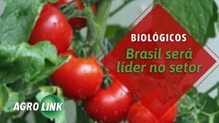 Brasil pode ser referência em produtos biológicos