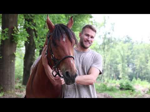 Drontens initiatief 'horse and hunk' brengt tiende paardenkalender uit