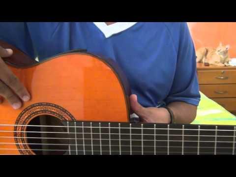 GUITARRA PASO A PASO -- GUITARRA WASHBURN ELEC C5CE