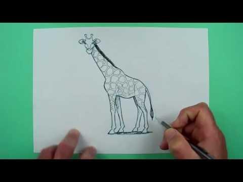 Wie zeichnet man eine Giraffe? Zeichnen für Kinder