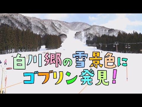 【白川村】公式Youtubeチャンネル