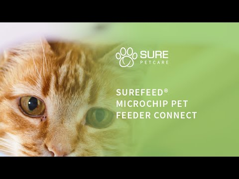 The SureFeed Microchip Pet Feeder Connect