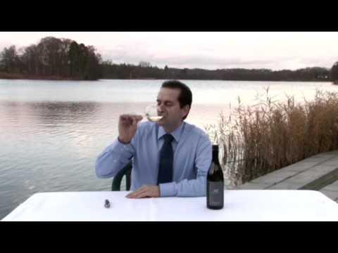 Grüner Veltliner Alte Reben 2008 vom Weingut Ebner-Ebenauer