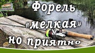 Рыбалка в Ленинградской области. Форель на малой реке. (Август) 2019.