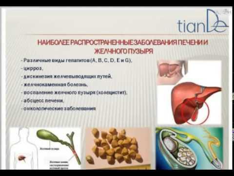 Что такое гепатит желтуха