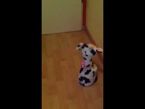Singende Kuh aus Plüsch