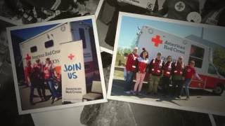 Join Us!  Red Cross of Alaska 2016 Wildlife Cruise