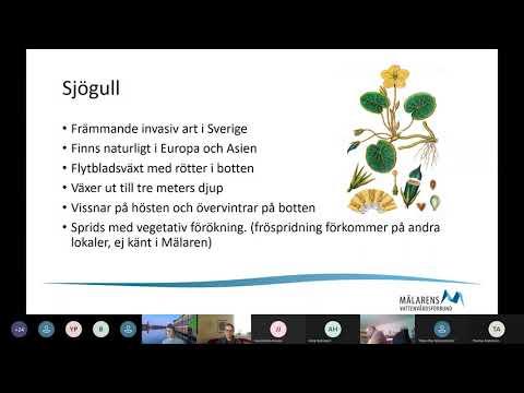 Karlsborg singlar