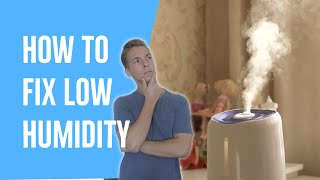 How Do I Fix Low Humidity? (Increase Humidity FAST)