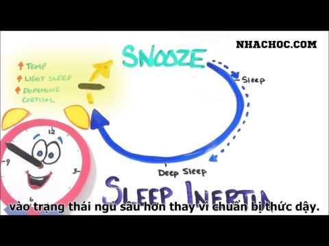 Bạn có nên sử dụng nút tạm tắt chuông không ? Dành cho các bạn thích ngủ nướng