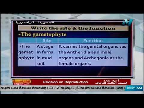 أحياء لغات الصف الثالث الثانوي - Revision on Reproduction تقديم أ/ شريف فرغلى || 28 ابريل 2020