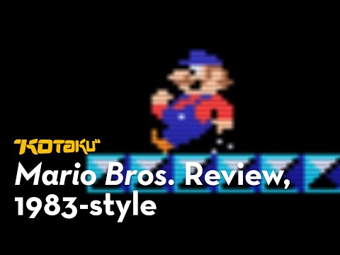 You Know What They Should Have Done With Mario Bros.?