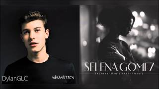 [ORIGINAL] The Heart's Weight | Shawn Mendes & Selena Gomez Mashup!