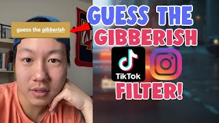 How To Get Guess The Gibberish Filter On Instagram and Tiktok | Guess The Gibberish Instagram Filter