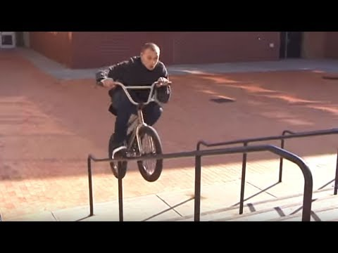 Animal Bikes: QSS 3