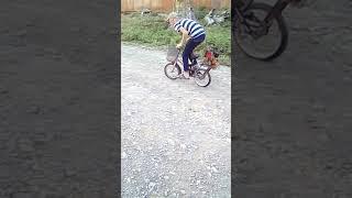 Ot biçən matorlu velosiped