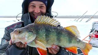 Рыбалка на иртыше зимой 2019