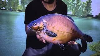 VideoImage1 Euro Fishing