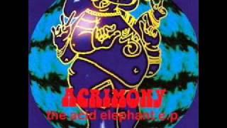 Acrimony - Fire Dance [LIVE]