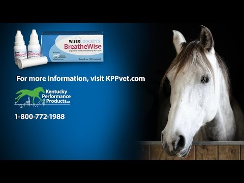 Wiser Concepts BreatheWise for Normal Respiratory Function (2000 mg) Video