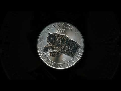Video - Kanada Predator - Grizzly - 2019