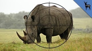 Save This Rhino and Win $25,000!
