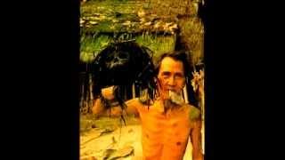 Autumn Carnival remix-test - Dandy Warhols (remix anton newcombe/f.lesure *berlin 2012)