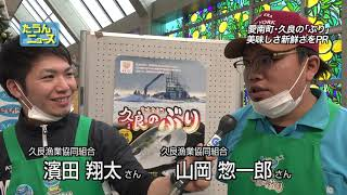 【4K】たうんニュース2018年12月「愛南町・久良のぶりをPR」