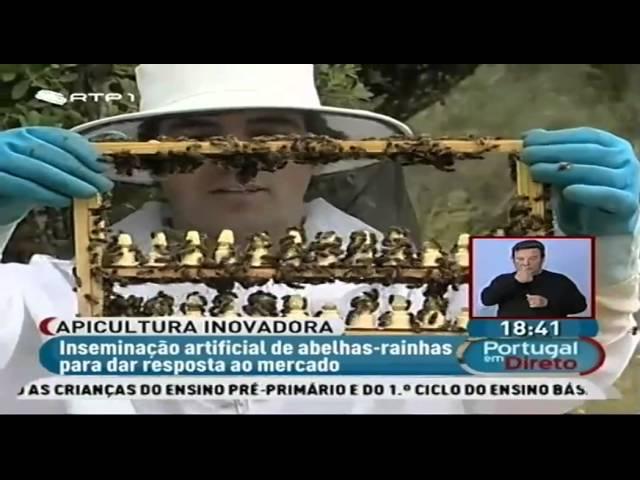 Vale do Rosmaninho na RTP