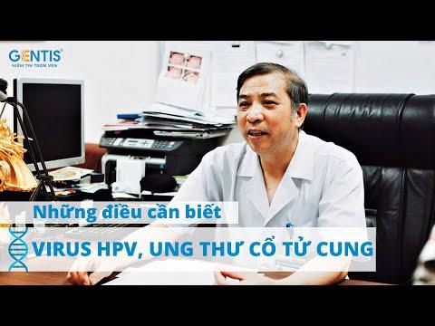 Humán papillomavírus és vastagbélrák