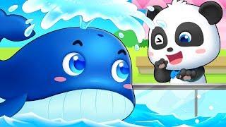 Animal Show | Baby Shark, Baby Care, T- Rex | Animal Songs | Kids Songs | Nursery Rhymes | BabyBus