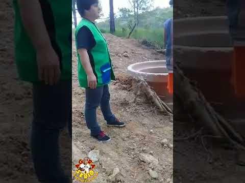 Fiscal do Meio Ambiente Betinha vai até o local da Lagoinha do 72 e Moradores registram o Momento