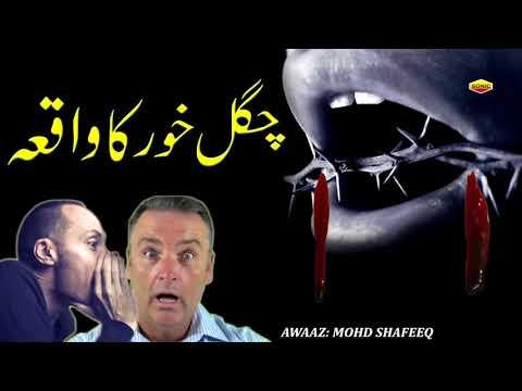 تازہ ترین اسلامی بیان ویڈیو 2017