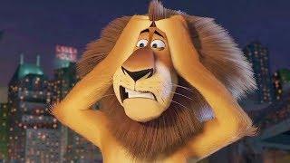 DreamWorks Madagascar | Marty's Gone!  - Madagascar Movie Clip | Madagascar | Kids Movies