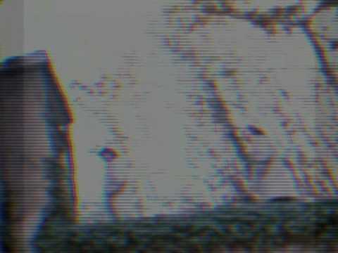 verkaufmusique - 02 Mehr Licht