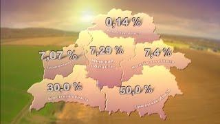 Массовый сев зерновых в Беларуси: в Брестской области засеяно треть площадей