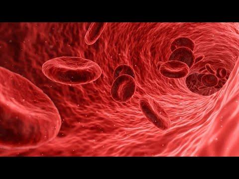 Ck. pitke vode za hipertenziju