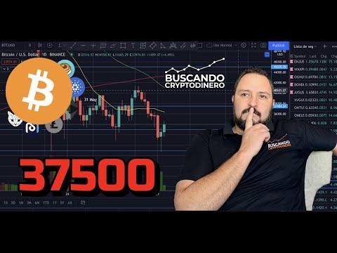 Trading 212 crypto