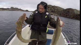 Изумительная морская рыбалка в Норвегии, Реальная рыбалка в Бергене круглый год. Nordvei.com