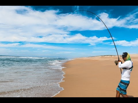 Un dia de surf fishing: Un buenTiburon y Jureles (Probando nuevas cañas)