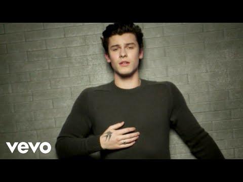 In My Blood Lyrics – Shawn Mendes