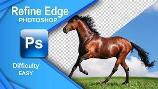 Photoshop Tutorial: Quick Selection -- Refine Edge