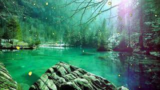 Relaxing Sleep Music - Deep Sleeping Music, Relaxing Music, Stress Relief, Meditation Music