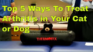 Top 5 Ways to Treat Arthritis in Your Cat or Dog (Without Surgery)